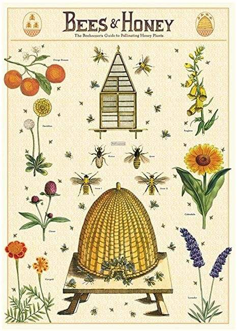 Bees & Honey Art Paper Cavallini Papers Wall Decor