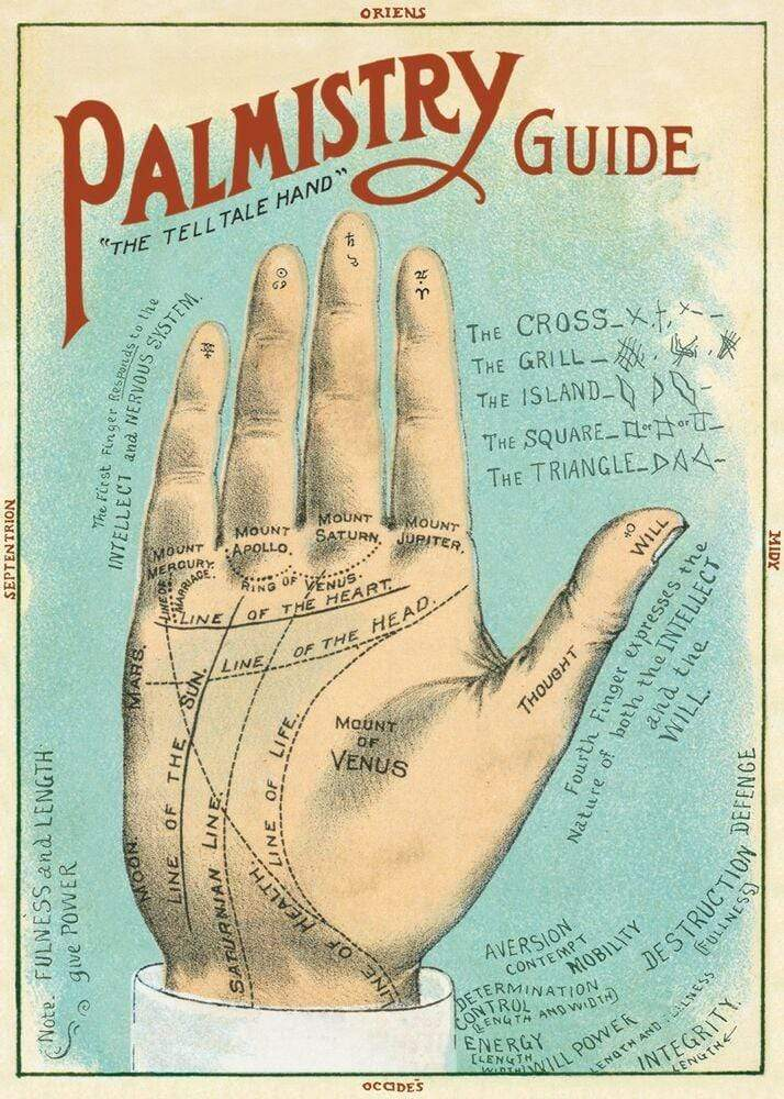 Palmistry Art Paper Cavallini Papers Wall Decor