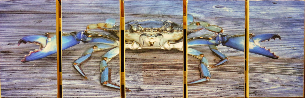 Blue Crab Stock Pallet