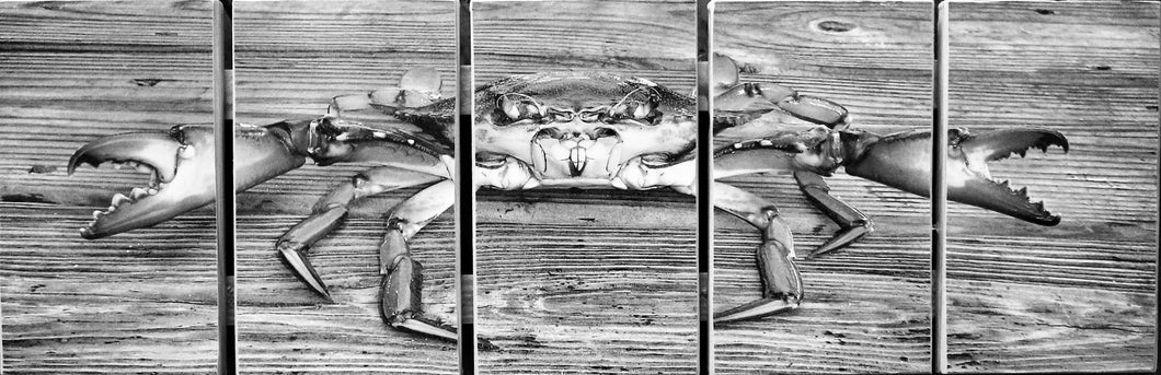 Black & White Crab Stock Pallet