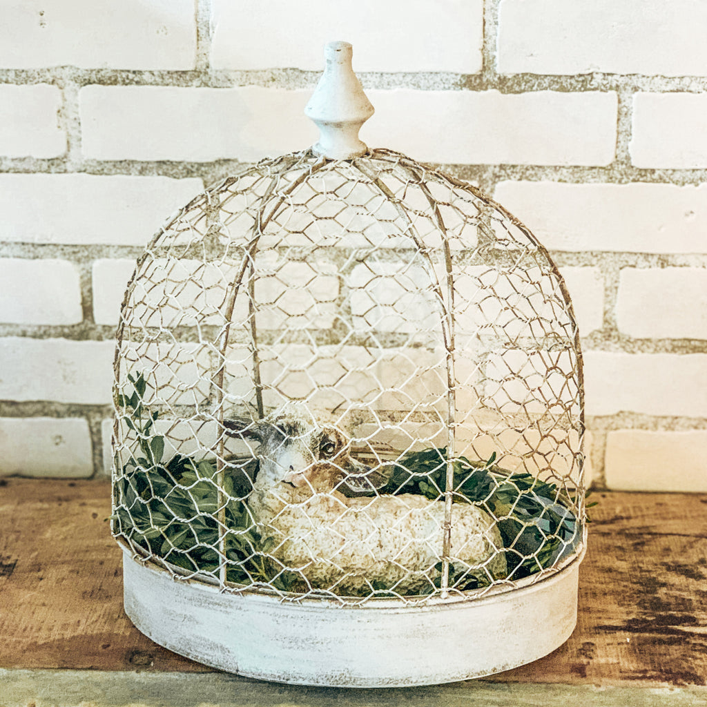 Small Metal Bird Cage