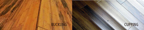 Cupping Buckling Wood Floors