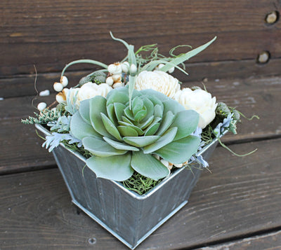 Artificial Airplant Succulent Sola Flower arrangement, Farmhouse Decor