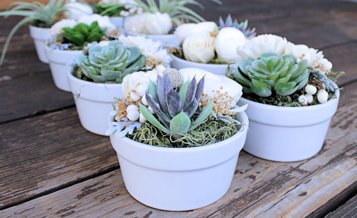 Wedding Favor, Succulent and Sola Flower Arrangement, Place Card Holder, Baby Shower Favor, Bridal Shower, Wedding Decor, Home Decor