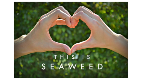 3 Ways Seaweeds are Good for Your Heart