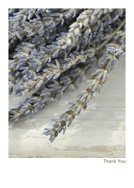 Lavender Thank You Card by B Street - The Perfect Provenance