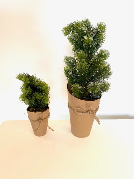 Small LED Fir Tree