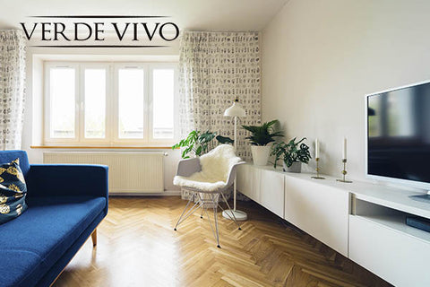 Home Care - Verde Vivo