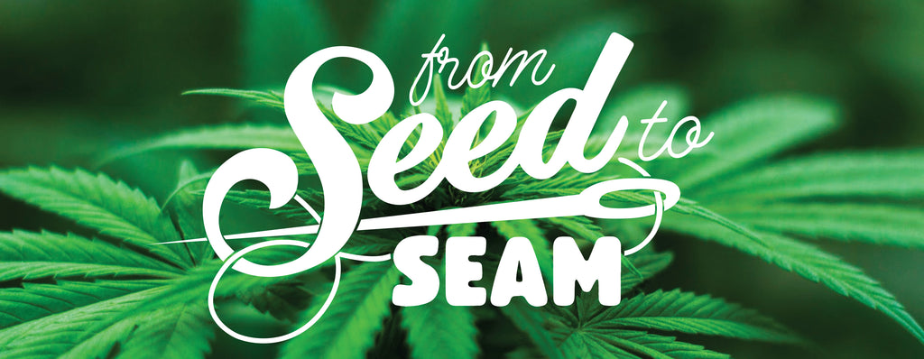Our Hemp Story: From Seed to Seam