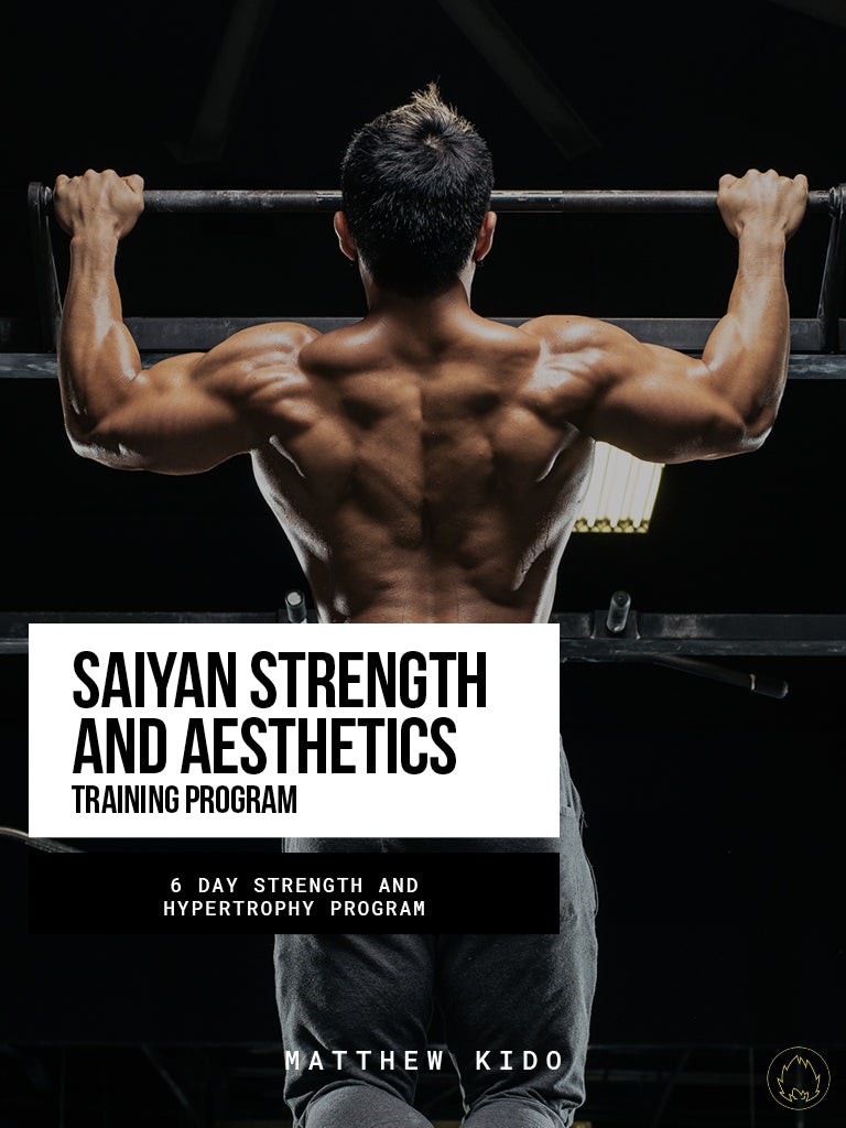 Saiyan Strength & Aesthetics Program