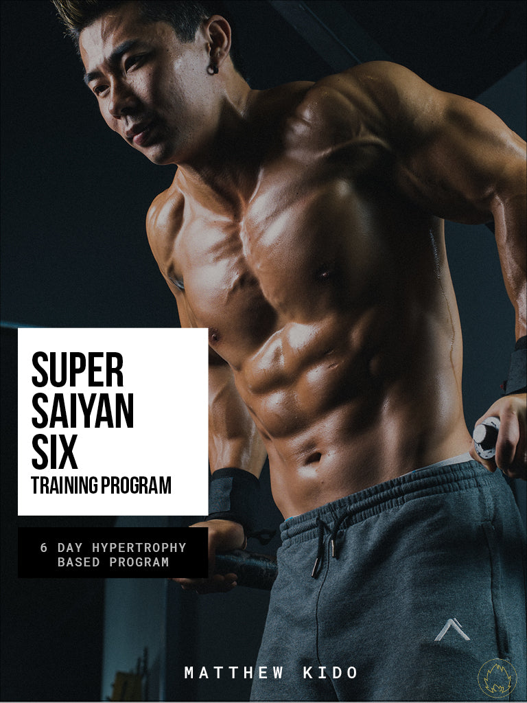 Super Saiyan Six Program