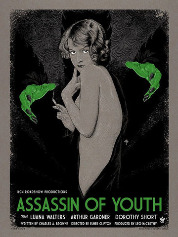 Assasin of Youth
