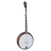 Recording King RK-R20 Tone Ring Banjo