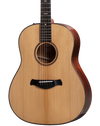 Taylor Builder's Edition 517e V-Class Bracing Natural w/case.