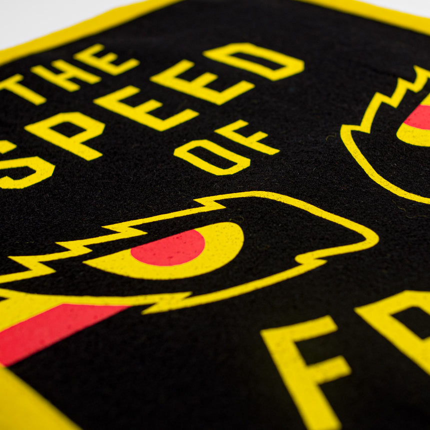 The Speed of Fright Roller Coaster Banner | Detail