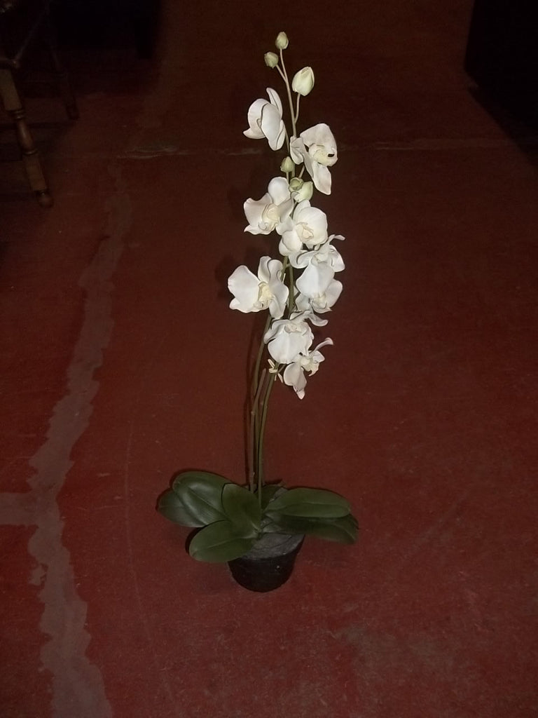 Faux white orchid in pot 20393