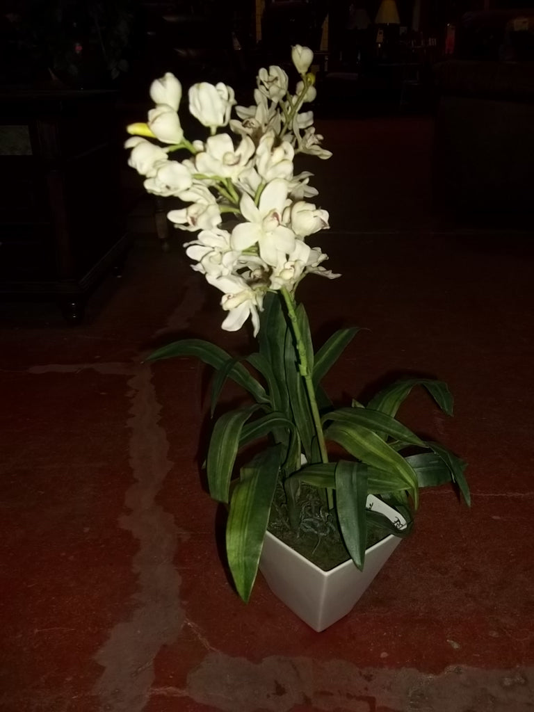 Faux orchid in pot 20414