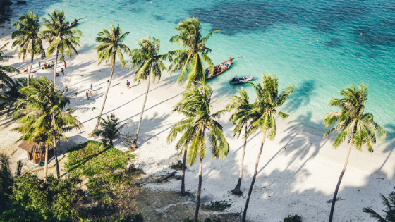 Tropical Destinations to Inspire You For 2020