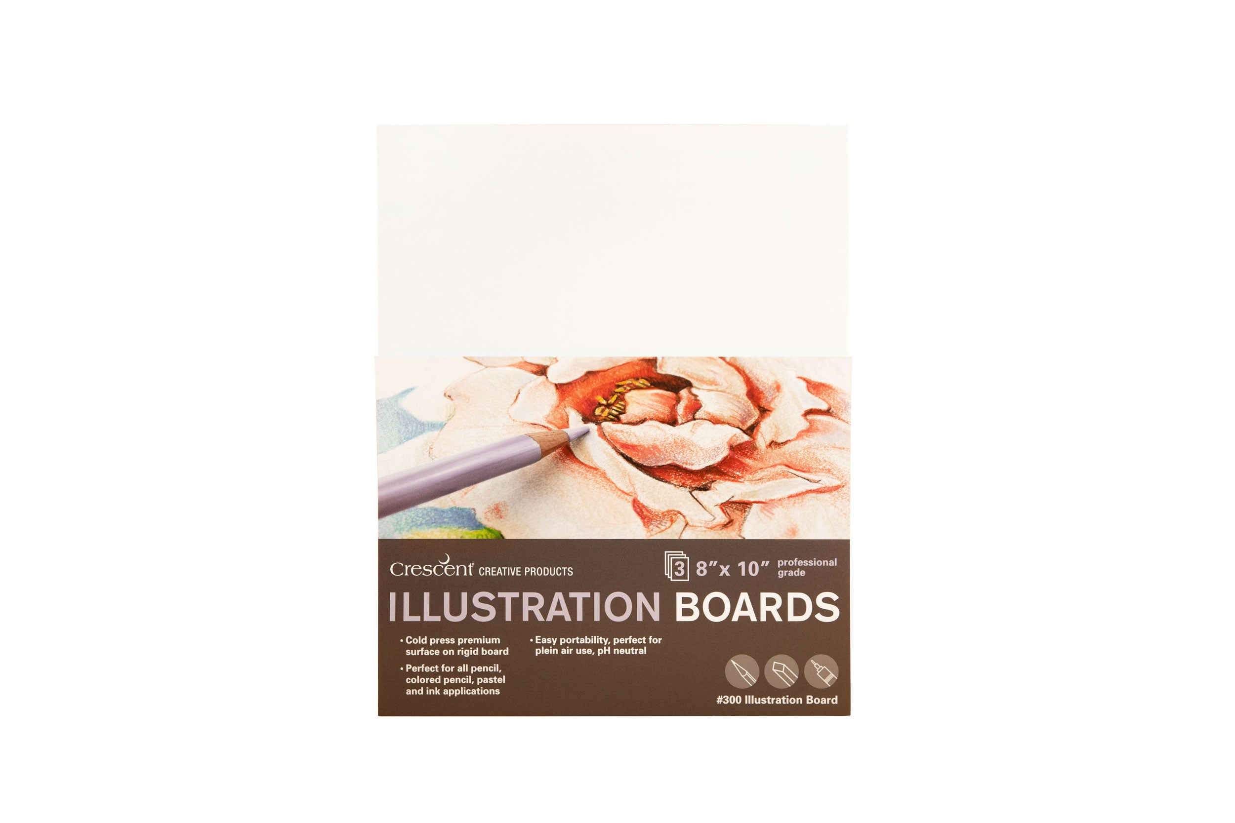 "COLD-PRESS ILLUSTRATION BOARD 300 SERIES - 8"" X 10"", 3/PKG."