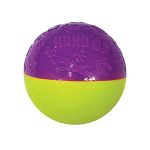 KONG Iconix Ball Dog Toy