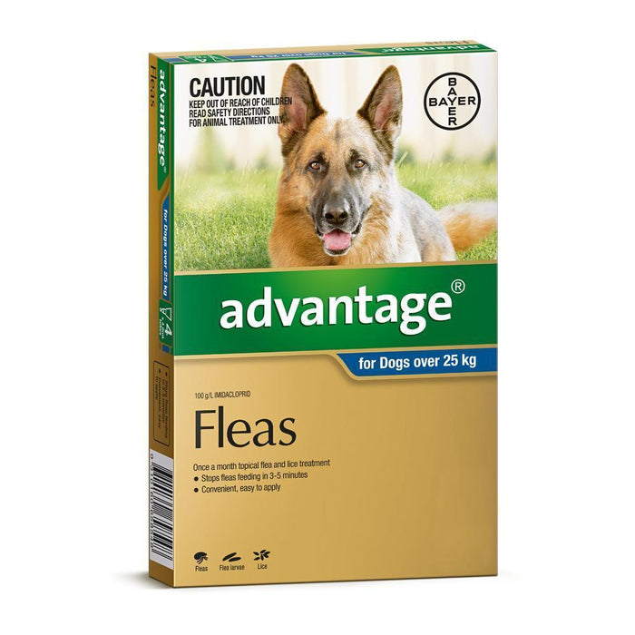 ADVANTAGE DOG 25KG+ BLUE 6 PACK