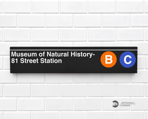 Museum of Natural History- 81 Street Station