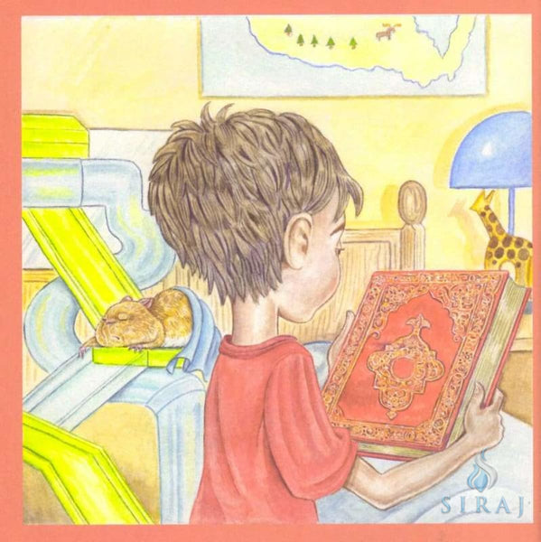 Rehan And The Mysterious Book - Paperback - Childrens Books - Farozan Warsi