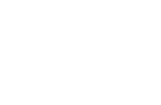 Patriot Alliance, LLC