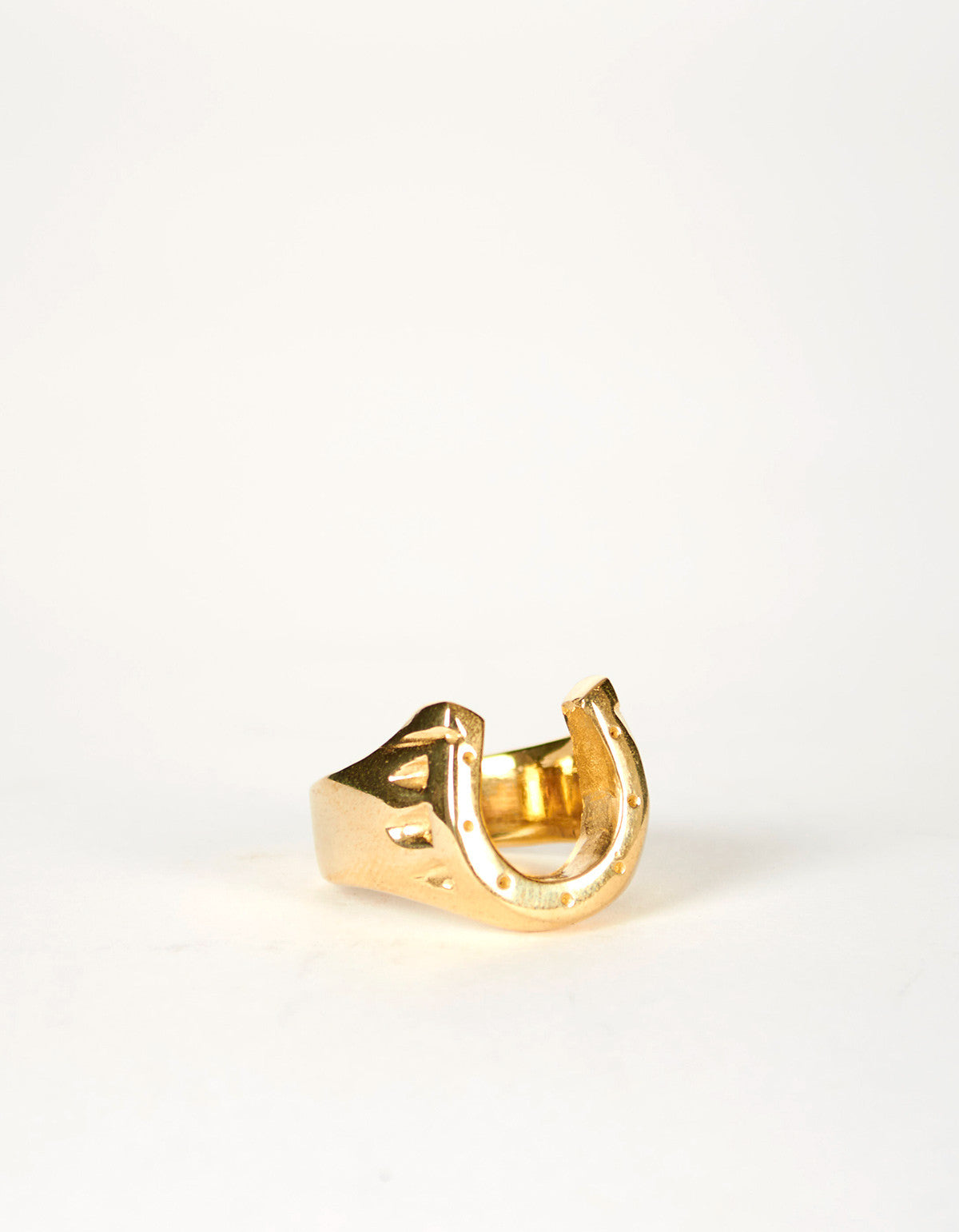 Jon Swinamer Horse Shoe Ring Bronze - Still Life - 4