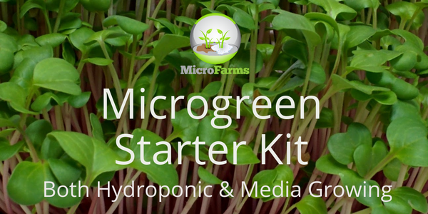 Microgreen Starter Kit, Both Hydroponic and Coir Media, 4 Crops
