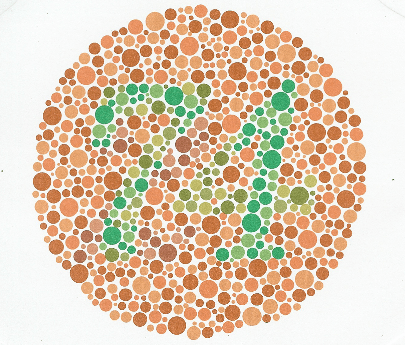 Book for color blindness - Kanehara Ishihara Colour Blindness Test Book