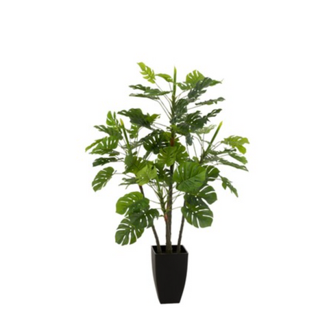 Philodendron In Pot Plastiek Groen Large
