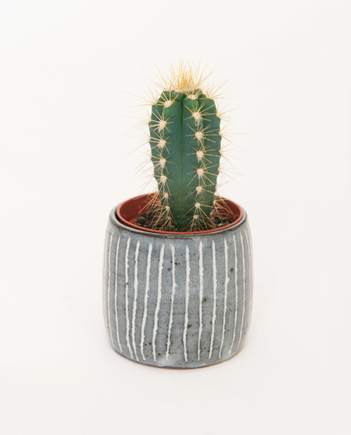 Blue Stripe Small Planter