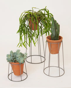 Chrome Plant Stand With Terracotta Pot
