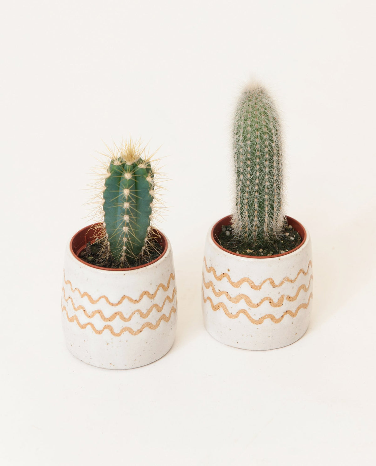 Wave Stripe Small Planter