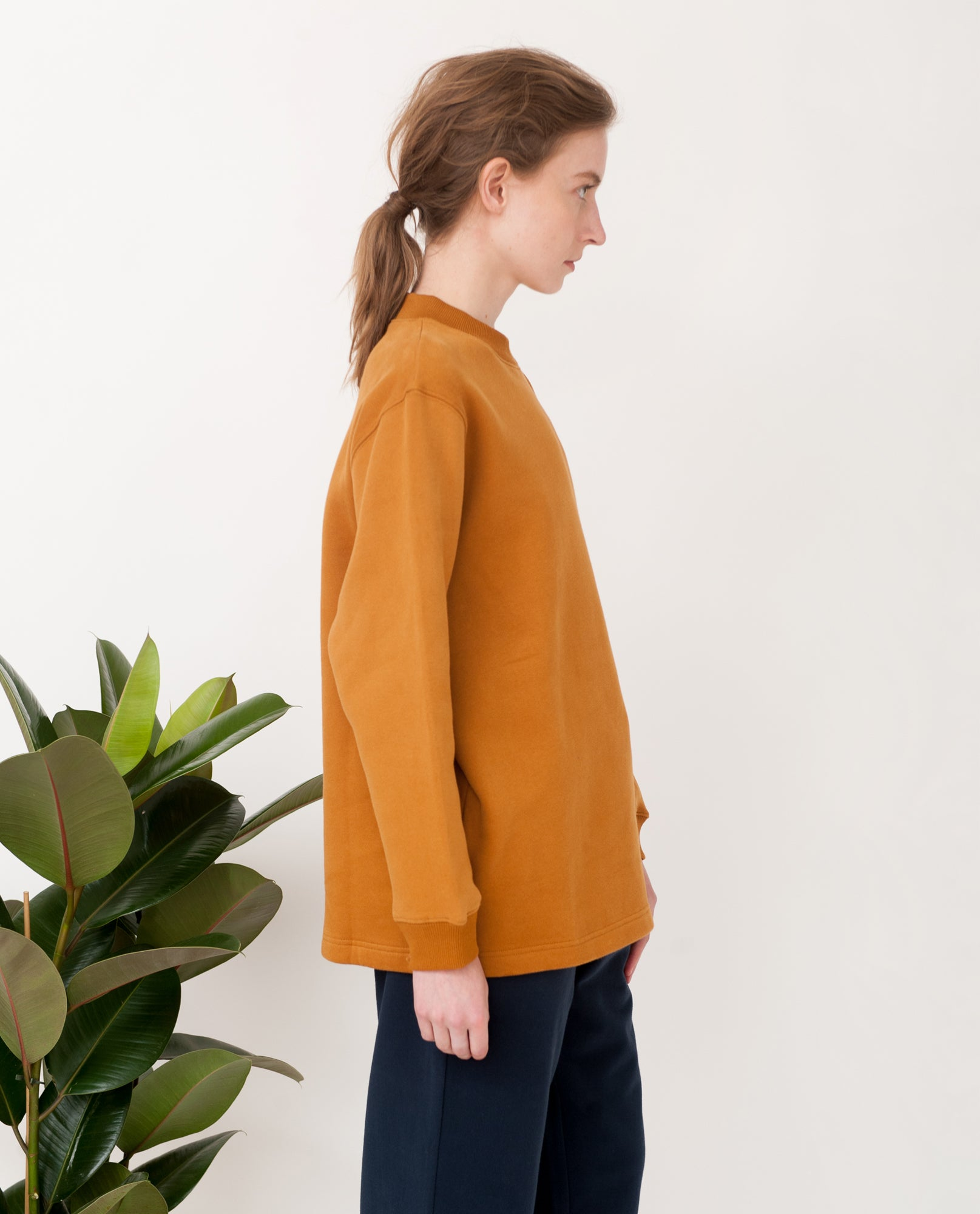 CAMERON Organic Cotton Sweatshirt In Rust