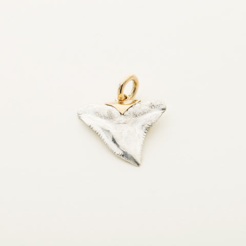 Shark tooth pendant - silver with 18k gold