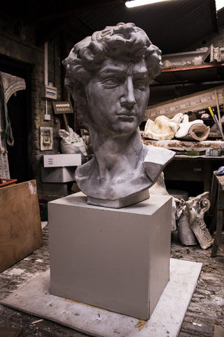 Bust of David - A Modern Grand Tour