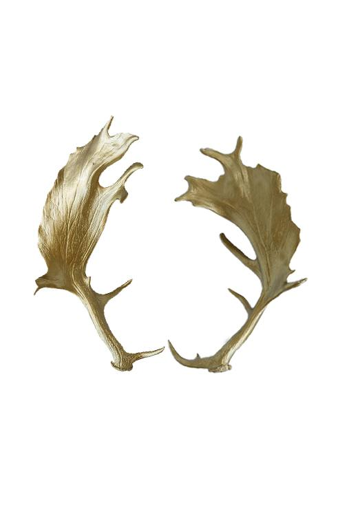 Stag Horns in Gold - A Modern Grand Tour