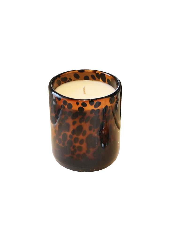 Luxury Aynhoe Park Candle - Tortoiseshell Lion - A Modern Grand Tour