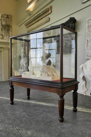 20th Century Monumental Glazed Museum Display Cabinet