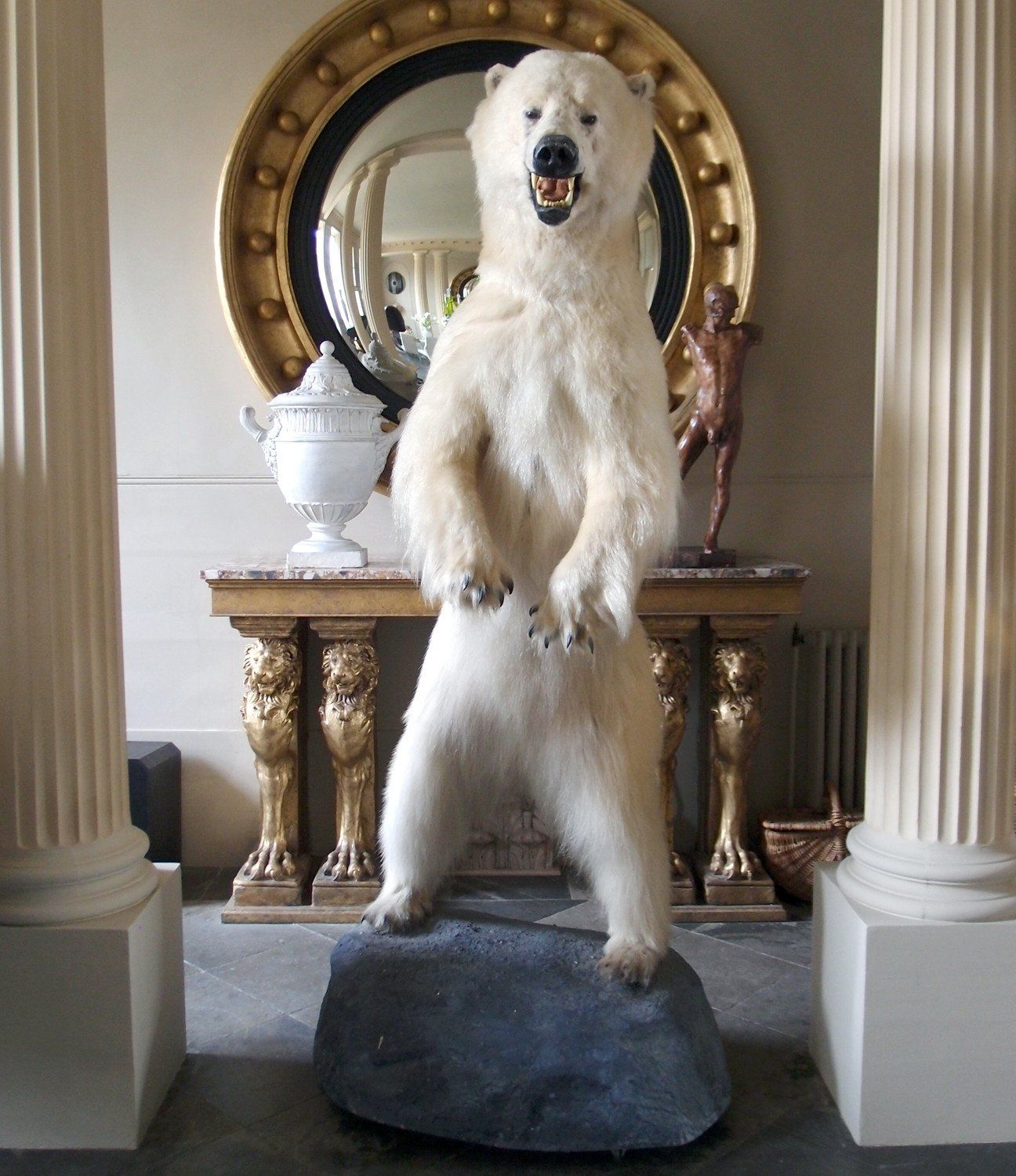 Taxidermy Full Size Polar Bear on Rock Mount