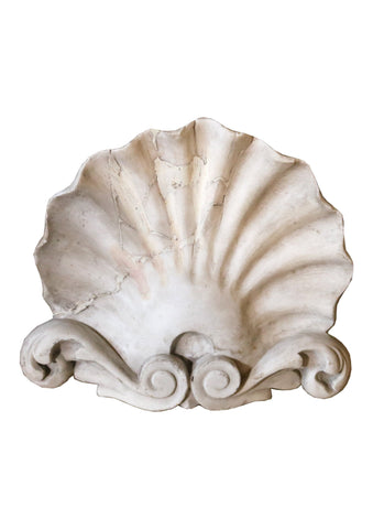 Carved Carrera marble English fragment of a Shell - A Modern Grand Tour
