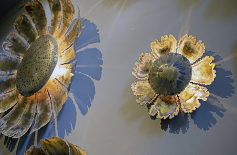 Small Aynhoe Sunflower Wall Light