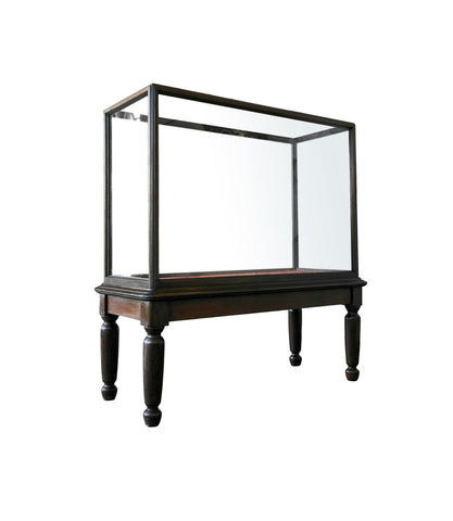 20th Century Monumental Glazed Museum Display Cabinet - A Modern Grand Tour