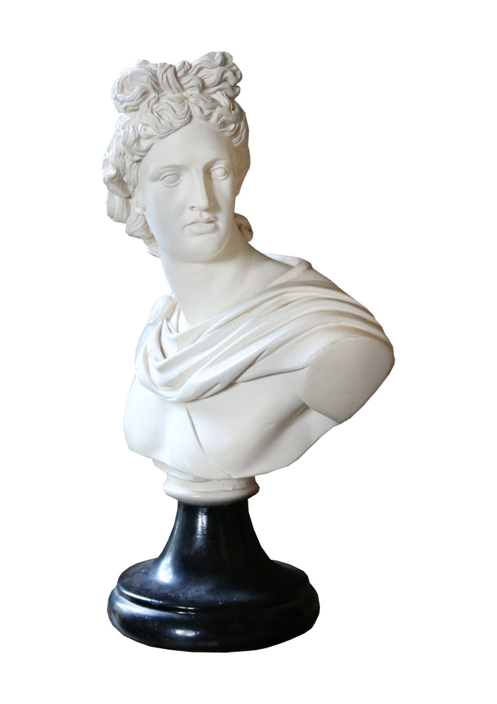 Marble Bust of Apollo - A Modern Grand Tour