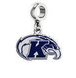 Kent State Golden Flashes Silver Logo and School Color Drop Charm