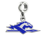 Longwood Lancers Silver Logo and School Color Drop Charm