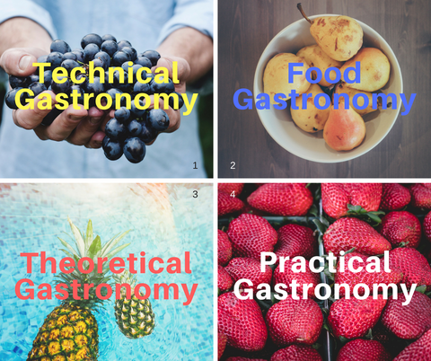 Four categories of Gastronomy