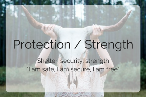 Protection / Strength Collection